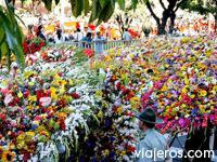 turismo_Medellin_turistico_sitios_lugares_Medellin_1